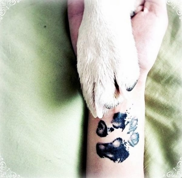 Inspirational Small Animal Tattoos and Designs for Animal Lovers - (75)