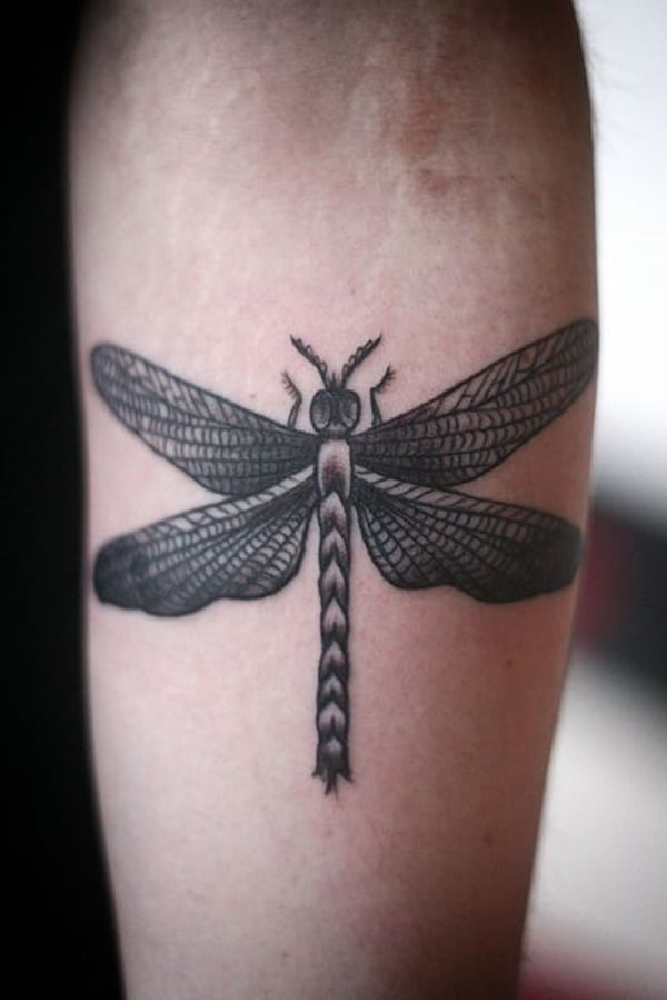 19afd162f 79 Artistic Dragonfly Tattoo Designs To Ink Sexy Your Body